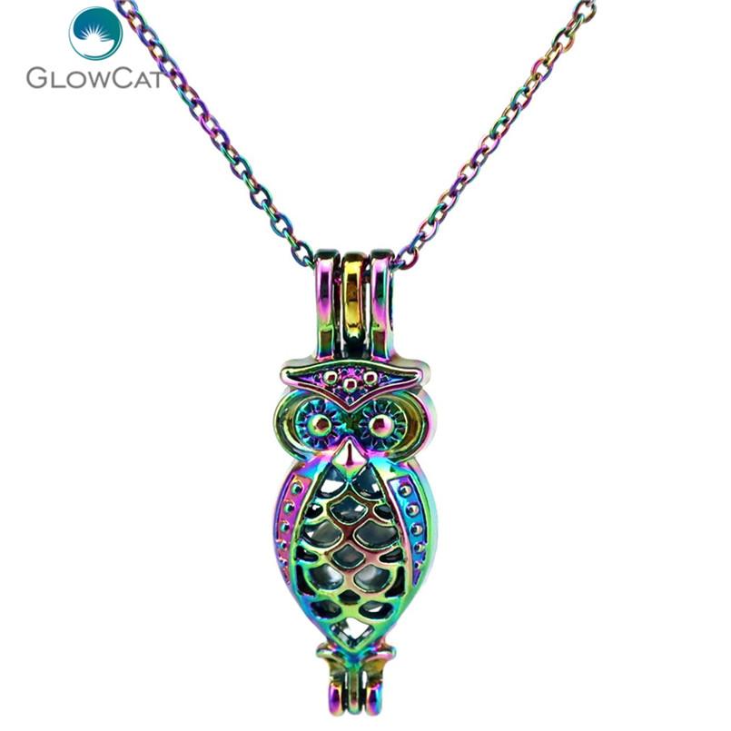 C593 Rainbow Color 35mm Animal Long owl Bead Cage Necklace Pendant Aroma Essential Oil Diffuser Locket Necklace