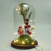 Usb мигающий свет искусственная свежая мини вечная Рождественская