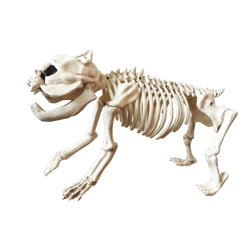 Skeleton Dog 100 Plastic Animal Skeleton Bones Spooky addition to Halloween Decoration