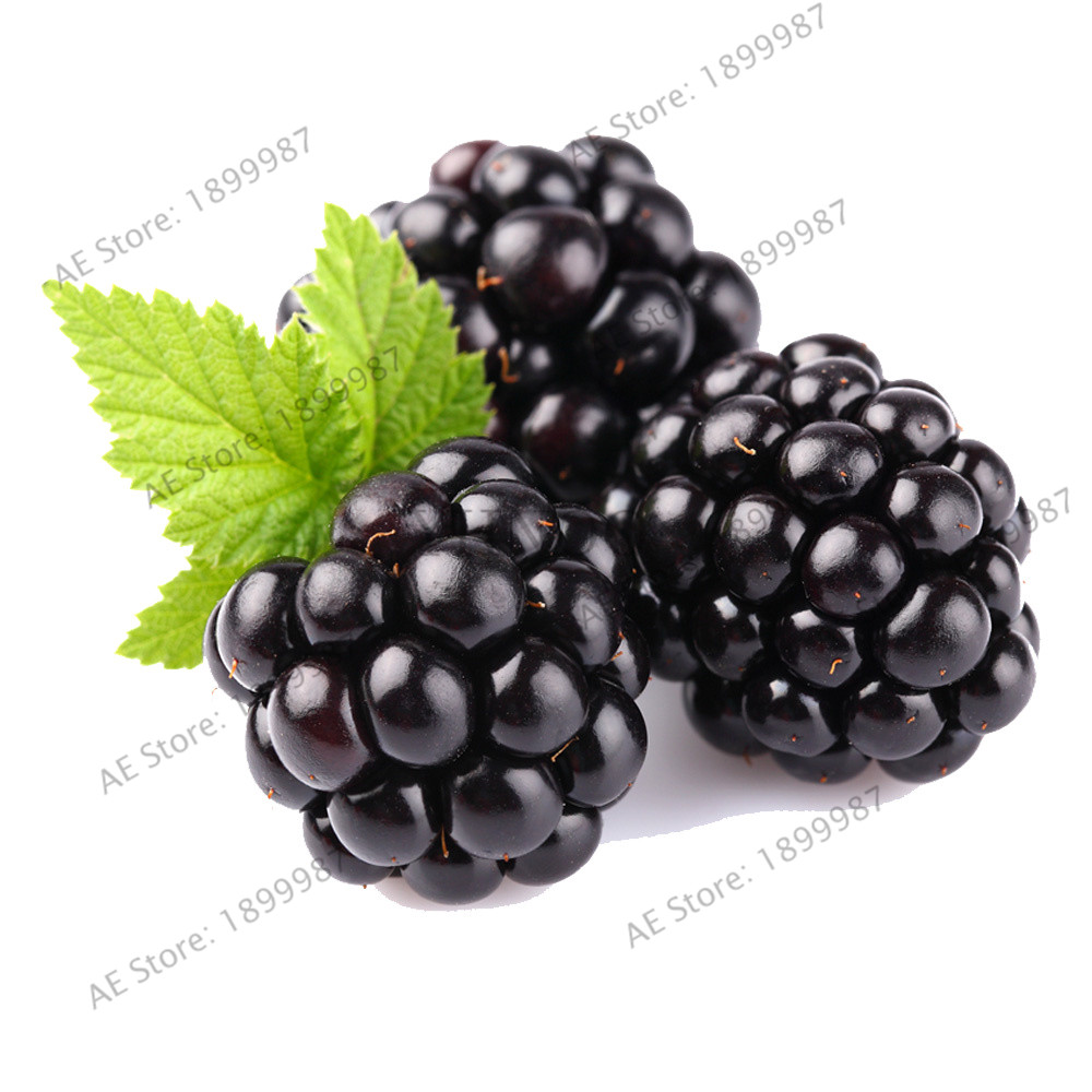 Te koop! 200 pcs Sweet Blackberry Giant Blackberry Heirloom Blackberry Bonsai Triple Crown Blackberry Black Mulberry Plant Fr