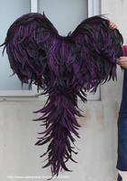 Big Black Devil angel wings stage performance fashion accessories Magazine shooting creative props EMS free shipping