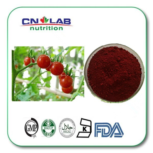 Tomato Lycopene Tomato Extract Lycopene10% Natural Lycopene Powder 200g 100% natural argy wormwood leaf extract powder 200g