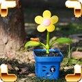Regalo de Año nuevo Bebé Juegos de Imaginación Agua Flores Toy Children Learning Herramienta de enseñanza Puede Caer Assemable Niños Juguetes de Agua Para la Diversión modelo
