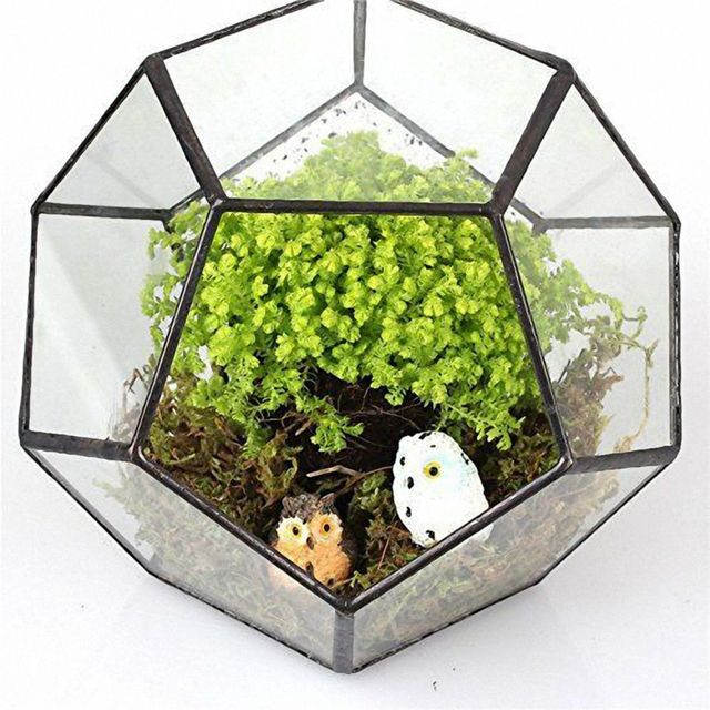 Black Glass Pentagon Geometric Terrarium Container Window Sill Decor