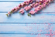 Laeacco Wooden Boards Flowers Petal Wedding Scene Photography Backgrounds Customized Photographic Backdrops For Photo Studio