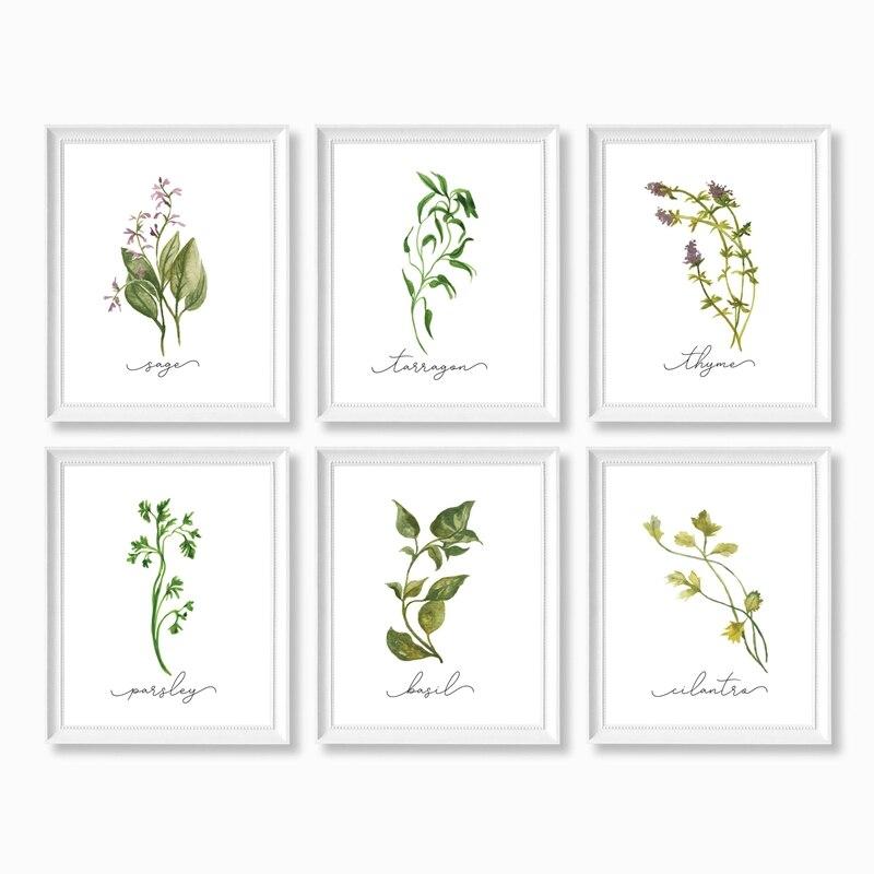 Herb Canvas Art Prints Home Decoration