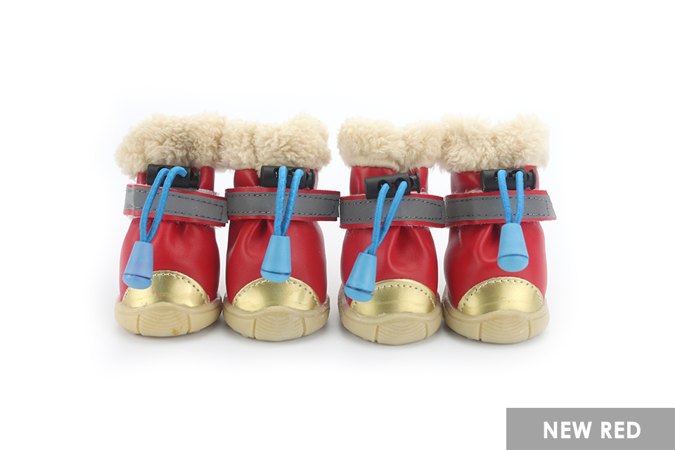 dog shoes 1