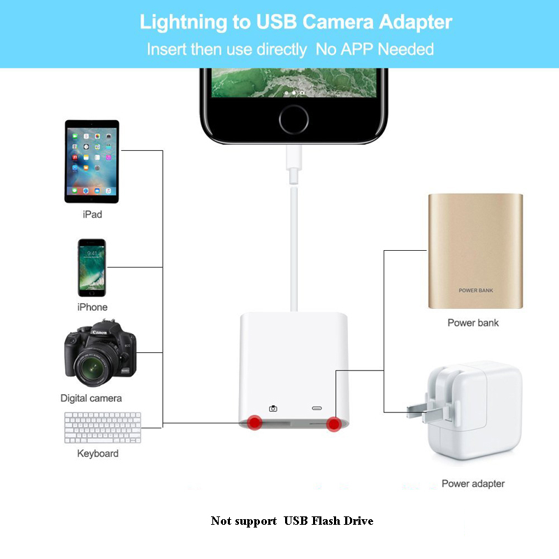 Reilim otg usb camera adapter for apple lightning to usb otg reilim otg usb camera adapter for apple lightning to usb otg converter for iphone ipad in mobile phone adapters from cellphones telecommunications on ccuart Image collections