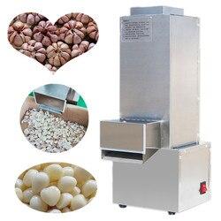 Stainless steel garlic peeling machine/ dry garlic peeler for small capacity/ convenient garlic peeling machines