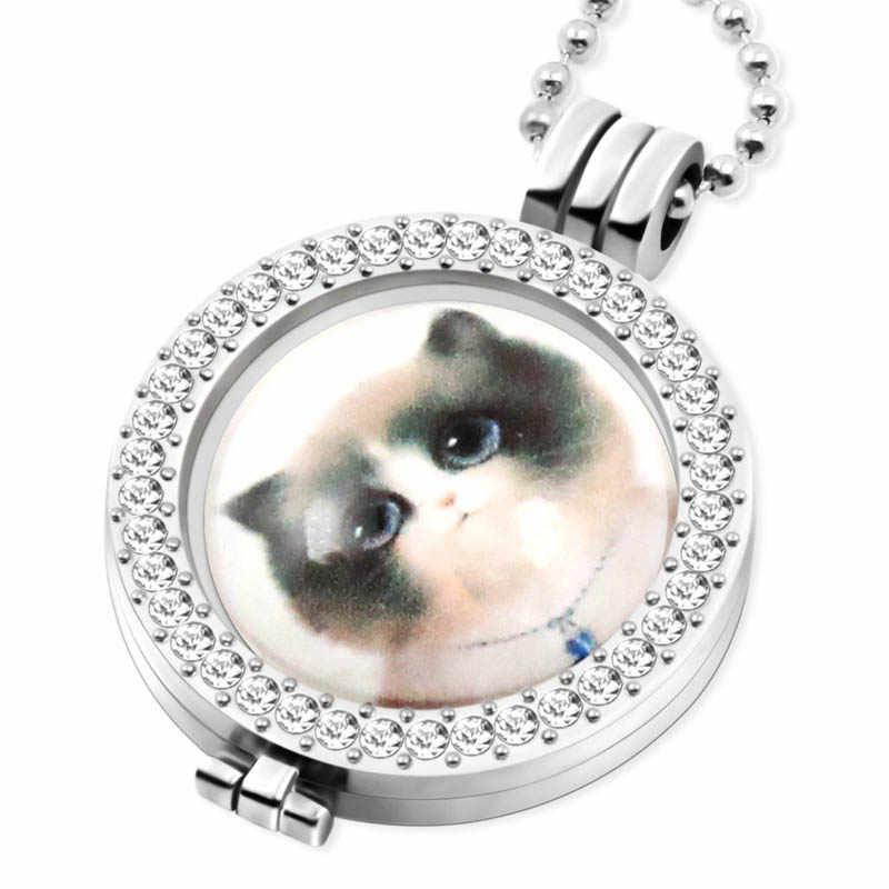 1 cái/lốc 33mm Của Tôi Moneda Coin Phù Hợp Với 35mm Glass Mèo Đồng Xu Khung Vòng Cổ Mặt Dây Chuyền, Chấp Nhận Tùy Biến MICP83-88