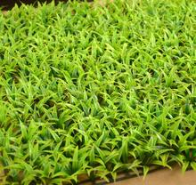 Green Seedling 25*25cm Artificial Encrypt Lawn Plastic Plant Fake Grass Greenland Ornament Simulation Grasses Garland Balcony