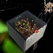 Паук Коробка рептилия скалолазание домашних животных держать дворец ящерица шелкопряда ребенок Скорпион Единорог Фея Жук Насекомое черный акрил