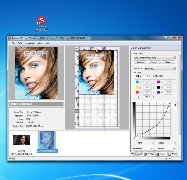Llave de bloqueo para Acrorip AcroRIP blanco ver9.0 software para Epson All UV impresora de inyección de tinta RIP Software USB blanco + de impresión en color