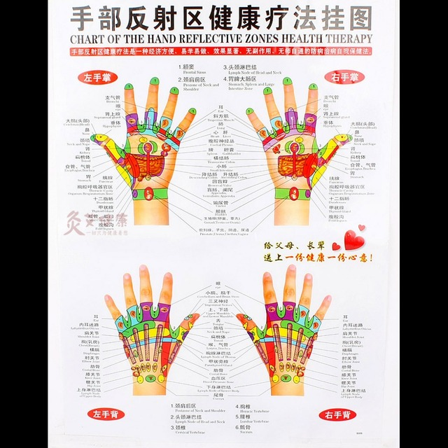 Chart of the hand reflective zone health therapy massage acupuncture acupoints in chinese english cm waterproof free ship also rh aliexpress
