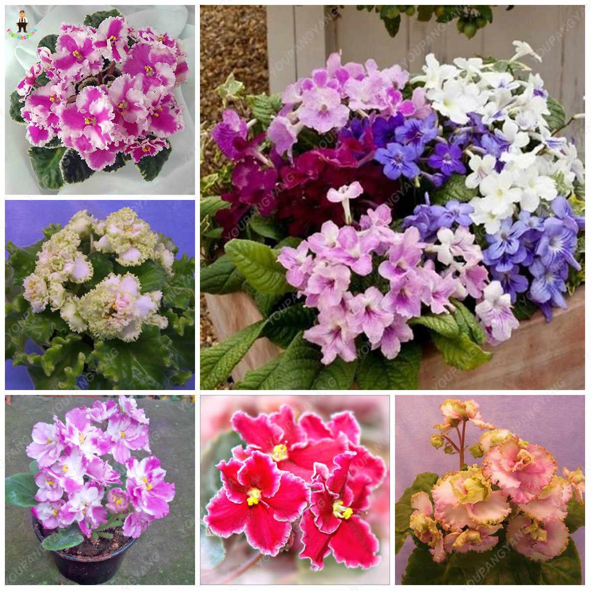 Что такое палитра цветов