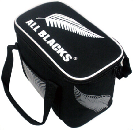 Thermal Insulated Cooler Lunch Bag Outdoor Picnic Tote Handbag Beverage Bento Lunch Box Bag with 2 Ice Bag 1 Pack