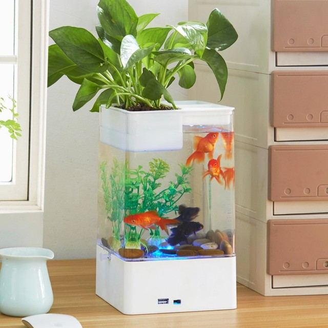 Multicolour Fish Tank With LED Light + USB Mini Small Acrylic Plastic Aquarium  Office Desk Transparent