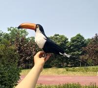 creative simulation black bird model polyethylene&furs Toucan toy gift about 45cm