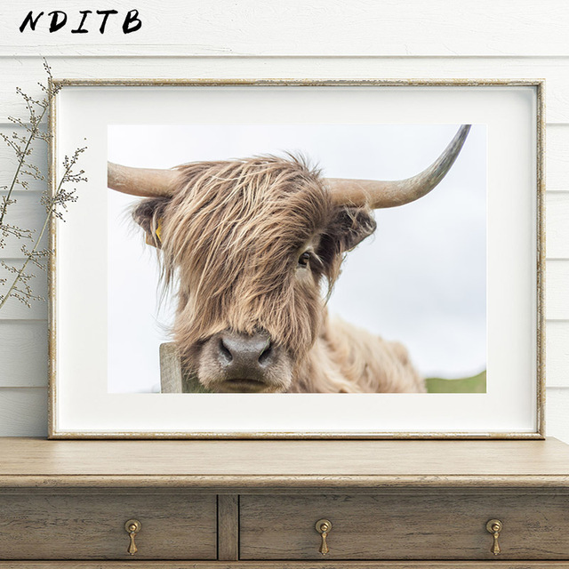 Cow Wall Art
