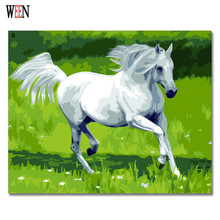 WEEN White Horse Pictures By Numbers DIY Animal Oil Painting Handwork On Canvas Coloring by number Home Decor For Living Room
