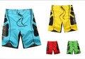 2017 Короткие Мужчины Совета Шорты Летние быстросохнущие Шорты Пляж Совета Шорты Купальники Пляжные Стволы