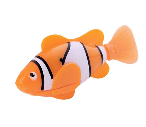 Clownfish Orange