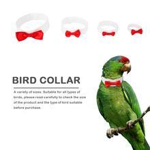 Одежда с птицами, попугаями, милым галстуком-бабочкой, галстуком для маленьких, средних и больших птиц, многоразовые ошейники для кошек, птиц, попугаев, одежда для декора