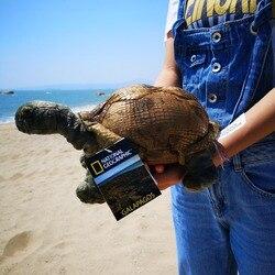 National Geographic 10,5 gefüllte Schildkröte meer tiere spielzeug pp baumwolle weichen bequemen baby geschenke
