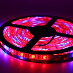 Светодио дный фитолампы полный спектр Светодиодные ленты света 5050 SMD светодио дный fitolampy растут огни 60 светодио дный s/m для парниковых гидро...