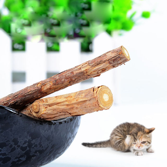 jouet chat matatabi