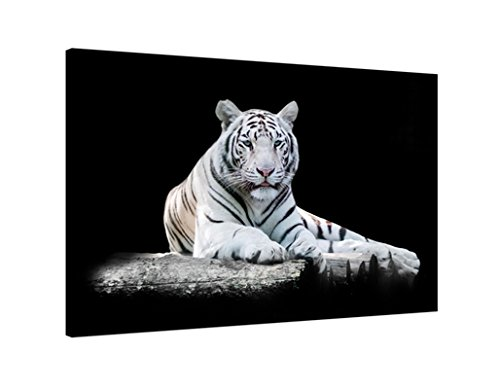 Black and White Tigers,Canvas Prints Framed Canvas Wall Art Animal Picture for Home Decor Wall Art Drop shipping