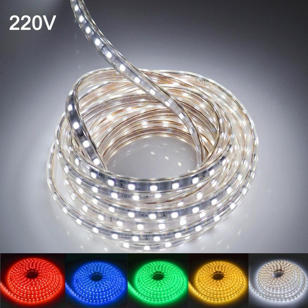 Waterproof 5050 Tape Light: LED Strip Light Waterproof LED Tape AC 220V SMD 5050