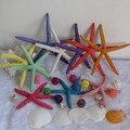 Conchas estrela do mar praia decoração natural artesanato de conchas concha adesivos de parede foto tiro adereços decoração náutica