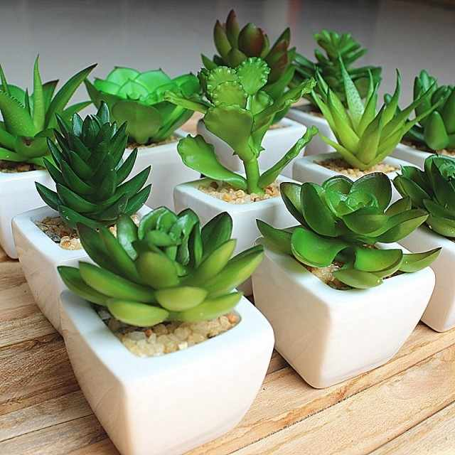 Hot Sale 12pcs Set Mini Artificial Potted Succulent Plant