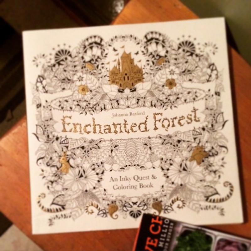 Enchanted Forest An Inky Quest Coloring Book In English Version