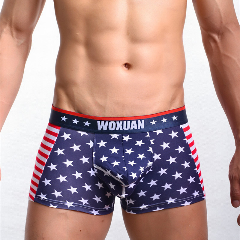https://ae01.alicdn.com/kf/HTB1BqhILXXXXXcsXXXXq6xXFXXX0/-font-b-Men-b-font-Soft-Cotton-Bulge-Pouch-Boxers-Male-Fashion-American-Flag-Print.jpg