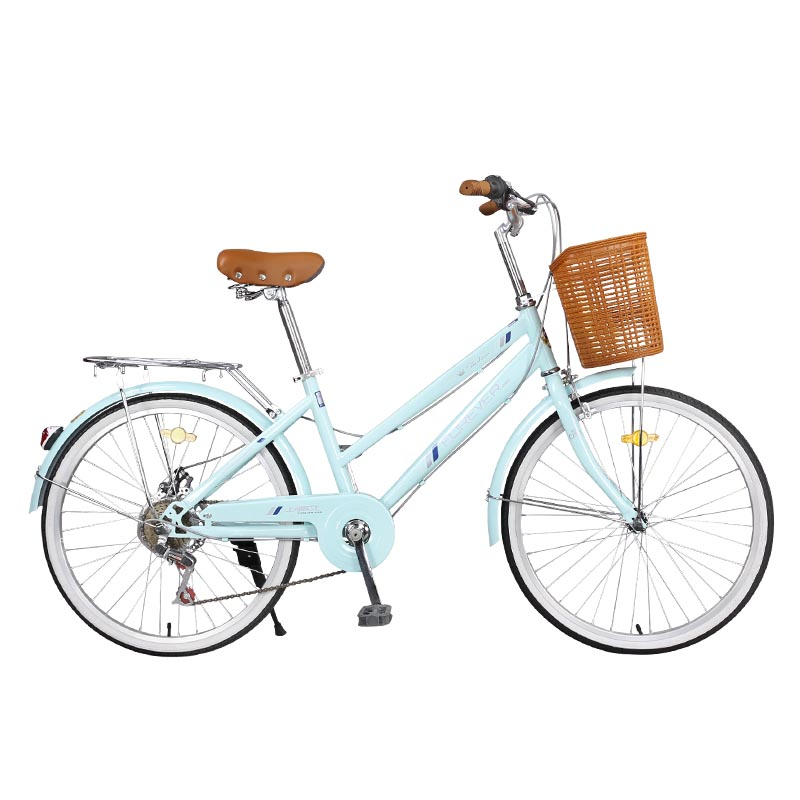 Bicycle Adult 6-speed Female City Riding Ordinary Travel 24 Inch Rural Wind