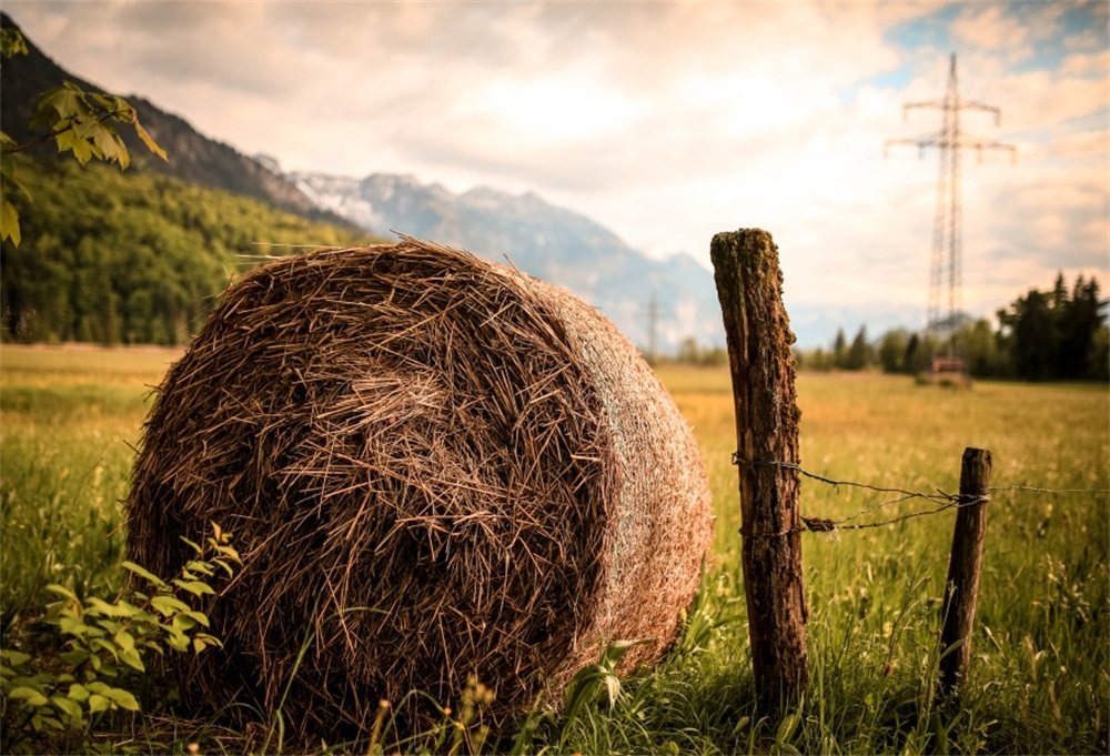 Laeacco Farm Grassland Hay Bale Photography Backgrounds Customized Photographic Backdrops For Photo Studio