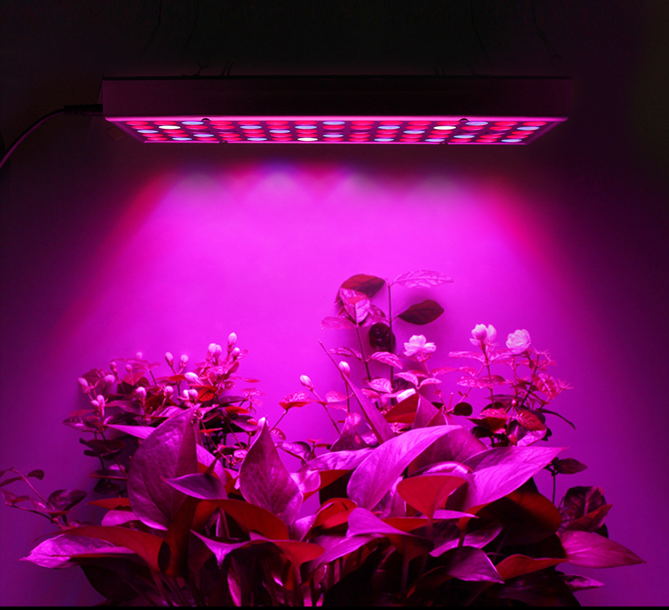 led grow light panel phyto lamp (1)
