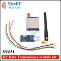 2 шт. 3 км 915 МГц 27dBm 500 МВт Si4432 SV651 Uart RS232 РФ Радио Передатчик