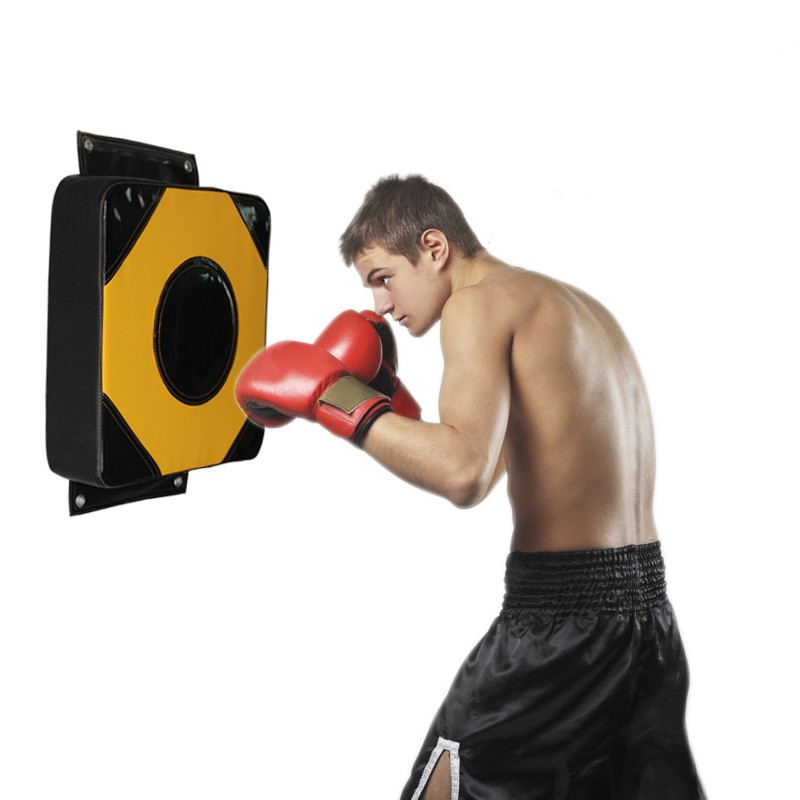 MagiDeal Boxing Glove Punching Pad Kicking Fighting Muay Thai MMA Hand Target Mitts