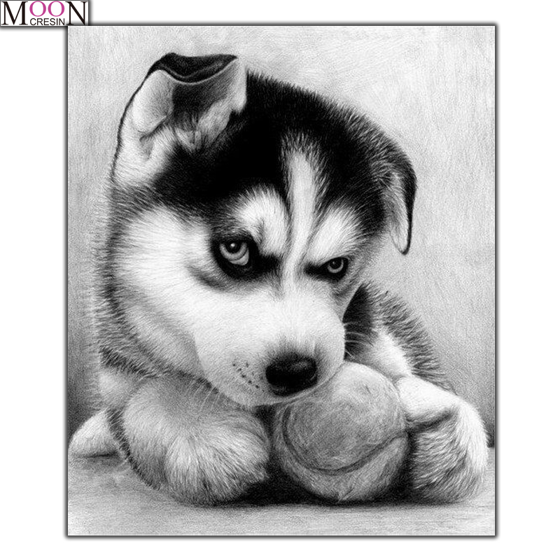 Diy Diamond Painting Cross Stitch Huskies Diamond Broderi Hund Diamond Mosaic Hushålls Decoration Paintings Full Square Drill