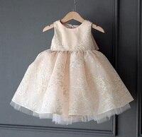 High Quality Lovely Pink Lace Dress New Girls Dress Princess Dress Children Party Wear Veil Big