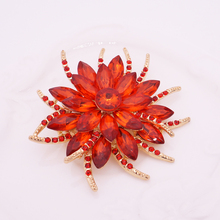 Crystal Brooch Pins For Women