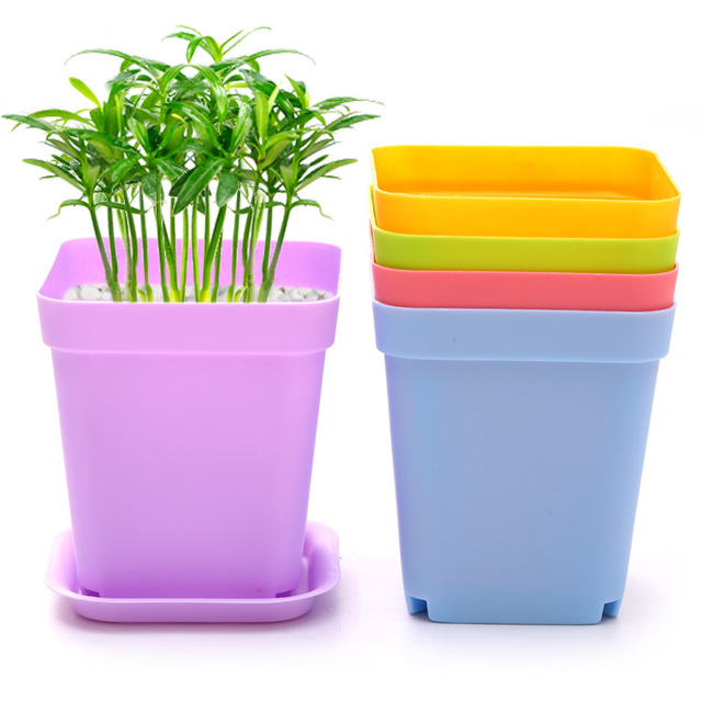 Wholesale cheap 12pcs small plastic multi colors garden pots planers wholesale cheap 12pcs small plastic multi colors garden pots planers succulent desktop flower plant pot workwithnaturefo