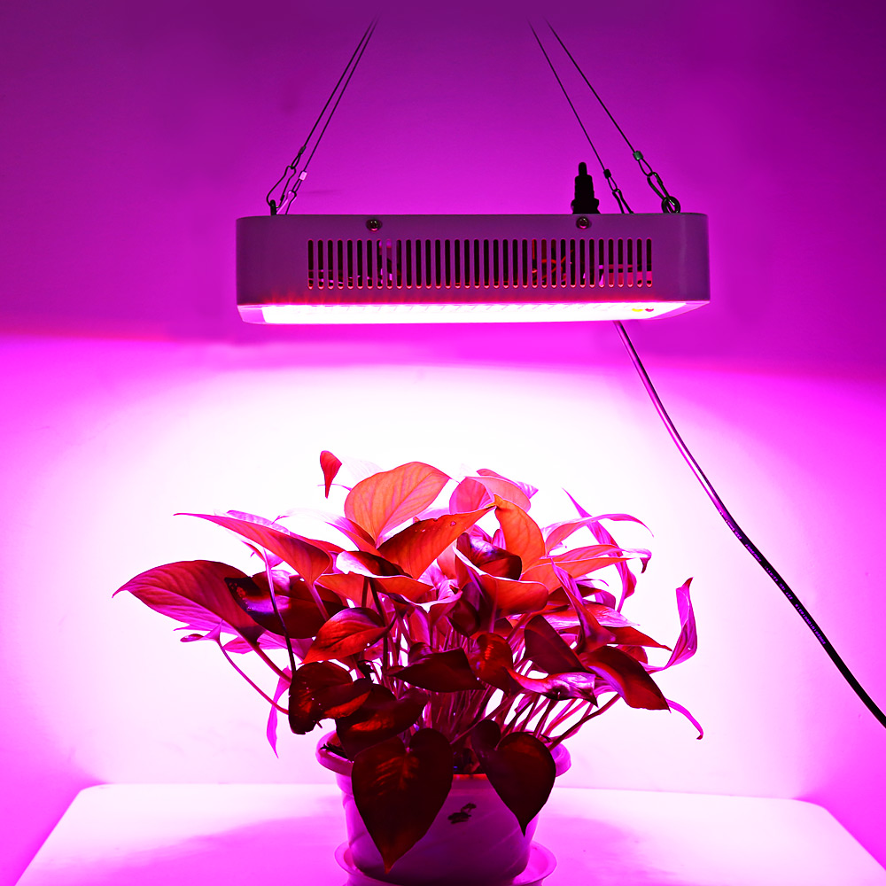 LED Plant Grow Light Panel Full Spectrum Grow Box Lamp Square Shape For Hydroponics Indoor Seedling Plant Grow Light Strip Light