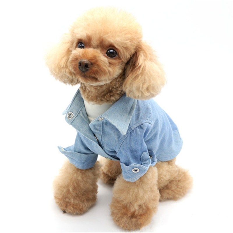 font b Pets b font Products Dog Supplies Clothing Jean Material Small Middle Puppy Classical