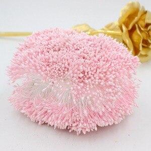 Image 4 - 900 teile/los Zufall Mixed Doppel Köpfe DIY Künstliche Mini Perle Blume Staubblatt stempel 1mm Floral Staubblatt Für Hochzeit Dekoration DIY