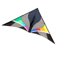 Professional 300 cm Ripstop Nylon Delta Kite And Power Kites With Flying Tools and Line Good Flying