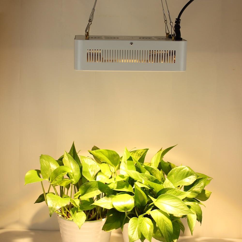 400 W CREE puce COB + lentille LED à spectre complet pousser la lumière pour serre hydroponique intérieur pousser tente commerciale plantes médicales croissance